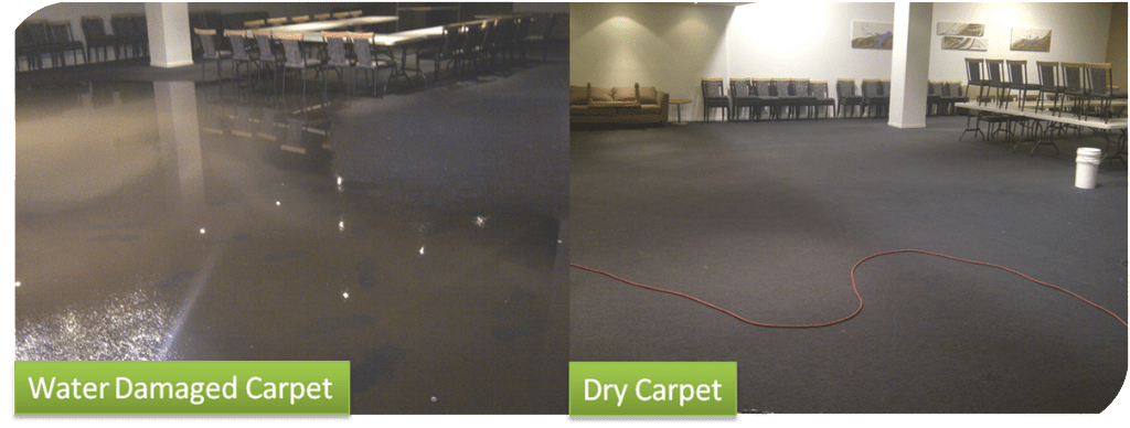 Water Damaged Carpet Drying and Restoration
